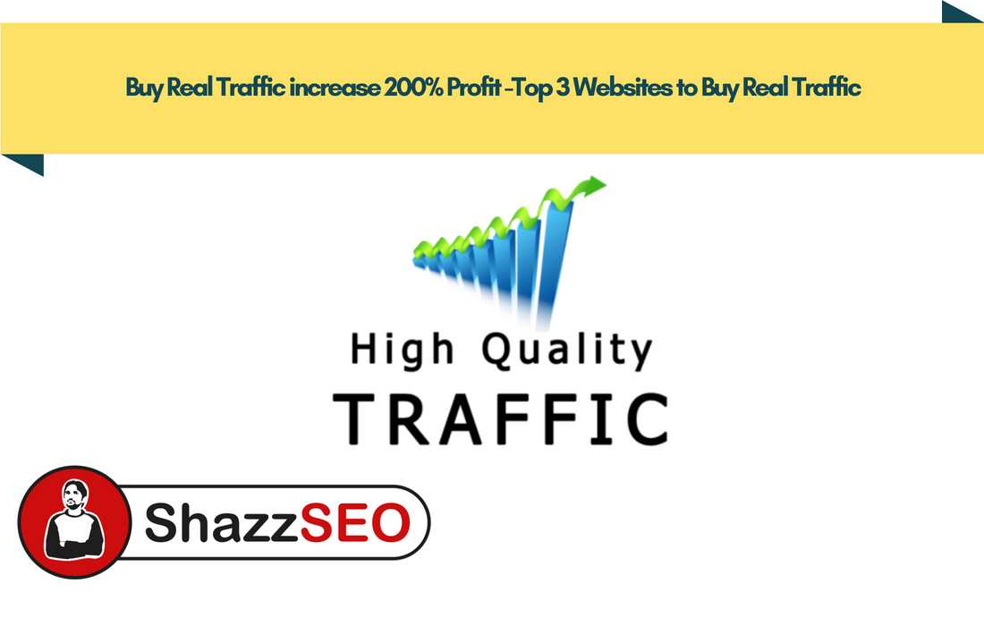 Buy Real Traffic increase 200% Profit -Top 3 Websites to Buy Real Traffic